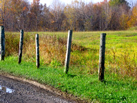 Wood fence on the side of the road at the beginning of Fall-Stock photos