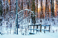 Little wood bridge crossing a creek in the middle of the forest, covered with snow, at sunset