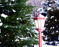 Red lantern, street lamp in winter with piine trees
