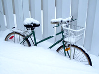 Bicycles stand under snow
