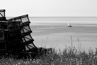 Lot of lobster cages by the sea-Black and white